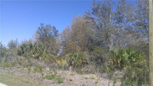 13208 Revell Ln, Port Charlotte, FL 33981 (MLS #C7249478) :: Medway Realty