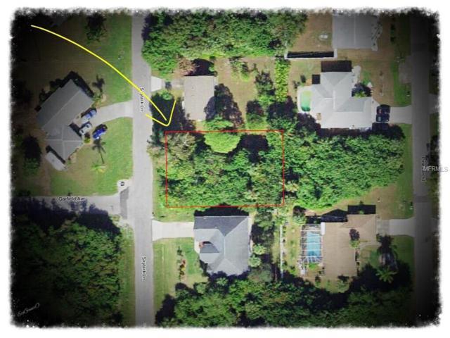 317 Skylark Lane NW, Port Charlotte, FL 33952 (MLS #C7249862) :: Team Pepka