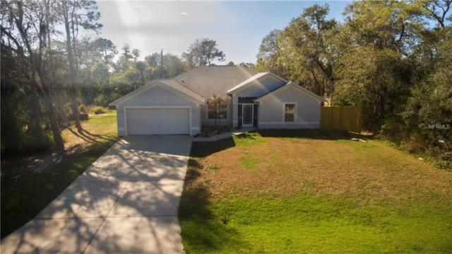 359 Hutchins Street, Port Charlotte, FL 33953 (MLS #C7249945) :: Griffin Group