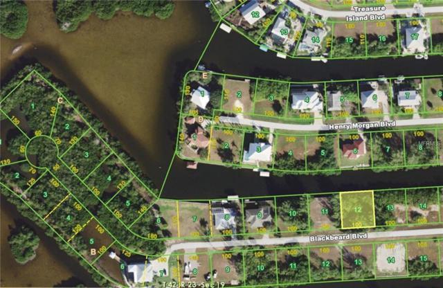 24210 Blackbeard Boulevard, Punta Gorda, FL 33955 (MLS #C7250021) :: Premium Properties Real Estate Services