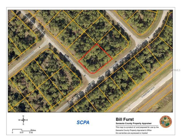 Monument Street, North Port, FL 34288 (MLS #C7250090) :: Griffin Group