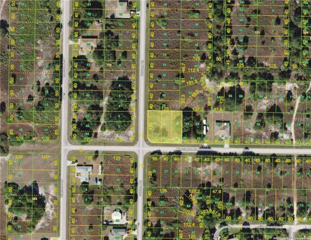 2222 Sulstone Drive, Punta Gorda, FL 33983 (MLS #C7250103) :: G World Properties