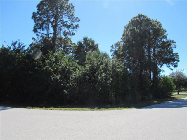 7239 Basel Lane, Englewood, FL 34224 (MLS #C7250104) :: Medway Realty
