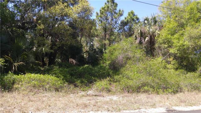 Dragon Street, North Port, FL 34288 (MLS #C7250238) :: G World Properties