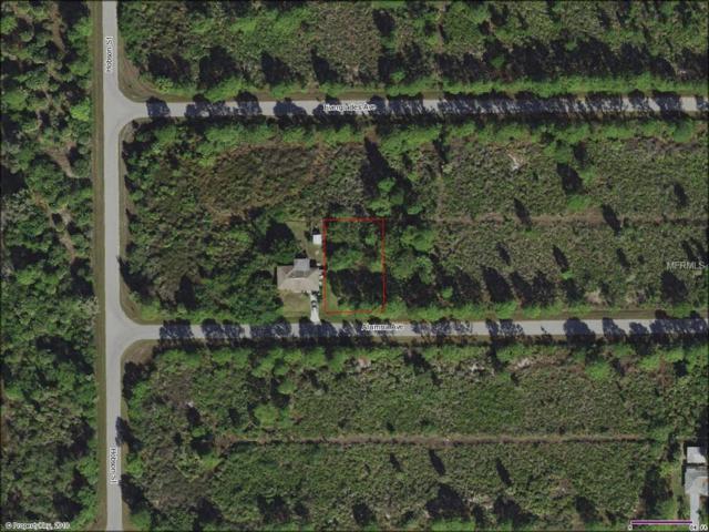 12094 Alumna Avenue, Port Charlotte, FL 33981 (MLS #C7250355) :: Godwin Realty Group