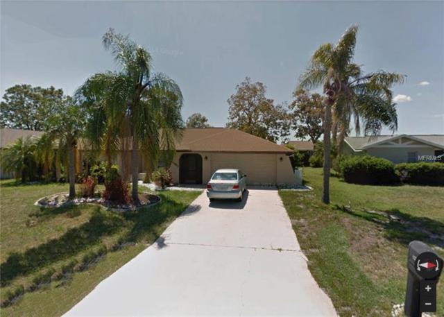 2407 Quirt Lane, Punta Gorda, FL 33983 (MLS #C7250374) :: Premium Properties Real Estate Services
