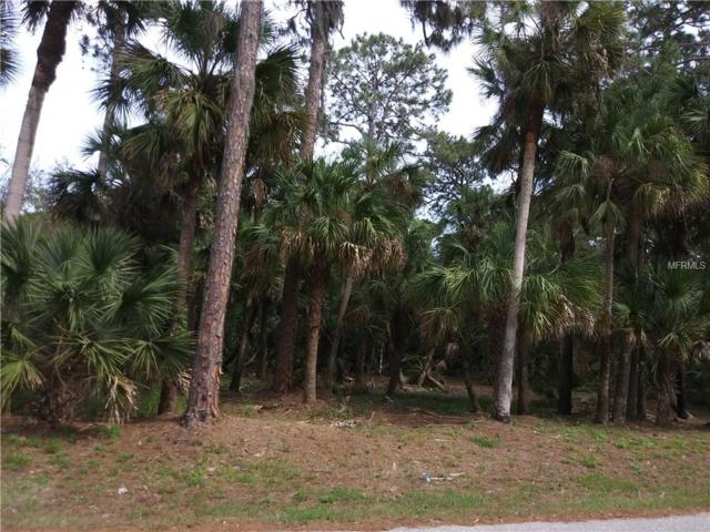 416 Sally Street, Port Charlotte, FL 33954 (MLS #C7250460) :: KELLER WILLIAMS CLASSIC VI