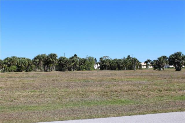 24241 Peppercorn Road, Punta Gorda, FL 33955 (MLS #C7250593) :: Godwin Realty Group