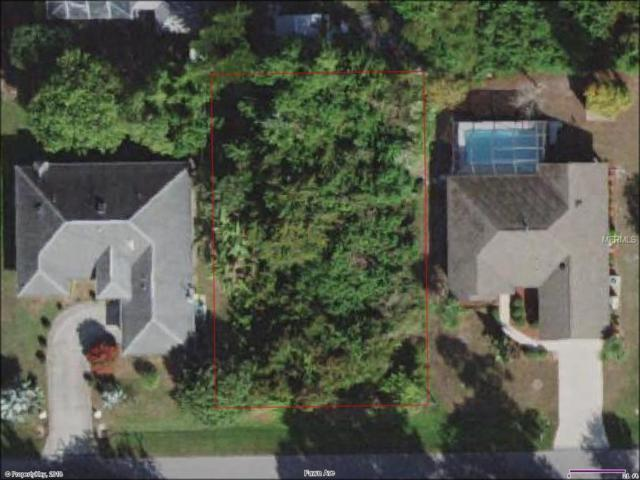 23186 Fawn Avenue, Port Charlotte, FL 33980 (MLS #C7250614) :: Griffin Group
