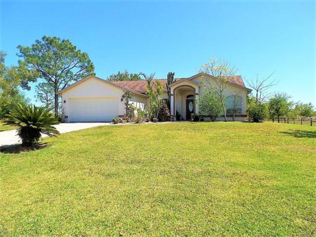 16100 Water Oak Court, Punta Gorda, FL 33982 (MLS #C7250659) :: Medway Realty
