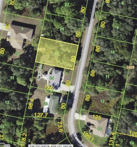 157 Camillia Lane, Port Charlotte, FL 33954 (MLS #C7250687) :: Griffin Group