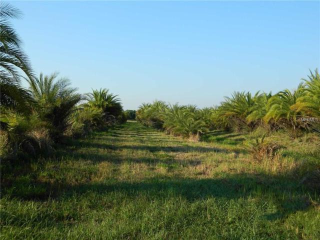 9931 SE English Avenue, Arcadia, FL 34266 (MLS #C7250748) :: G World Properties