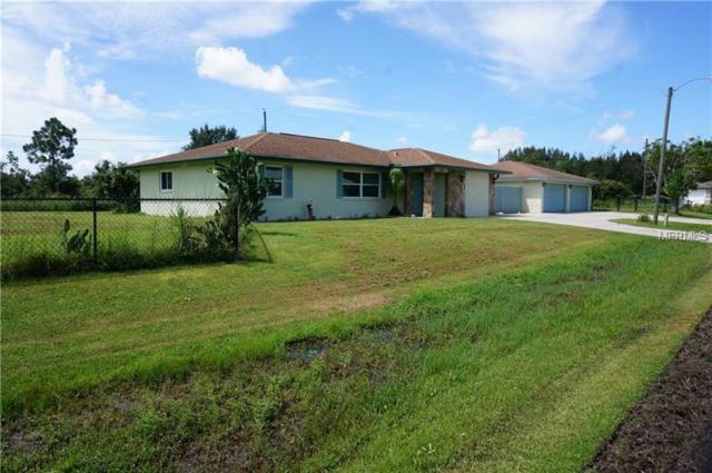 29315 Lillis Street, Punta Gorda, FL 33982 (MLS #C7250925) :: Godwin Realty Group