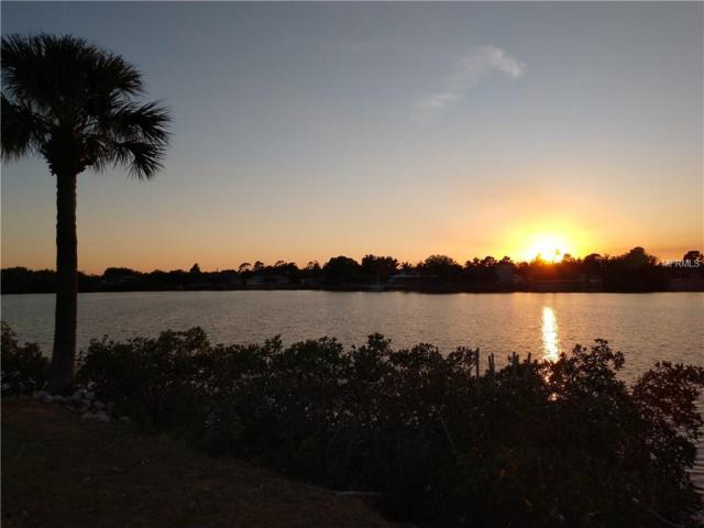 342 Spring Lake Boulevard NW, Port Charlotte, FL 33952 (MLS #C7250957) :: The Duncan Duo Team