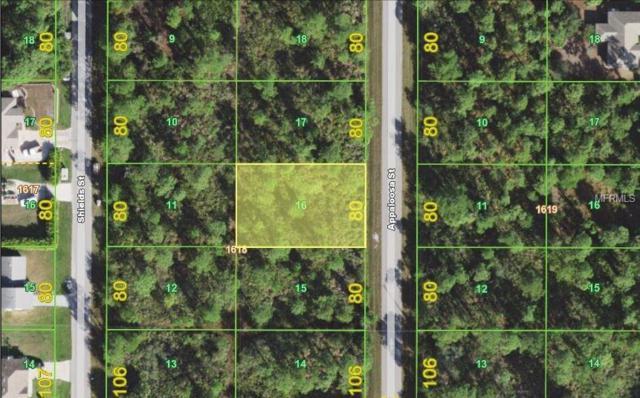 1447 Appaloosa Street, Port Charlotte, FL 33980 (MLS #C7251042) :: Medway Realty