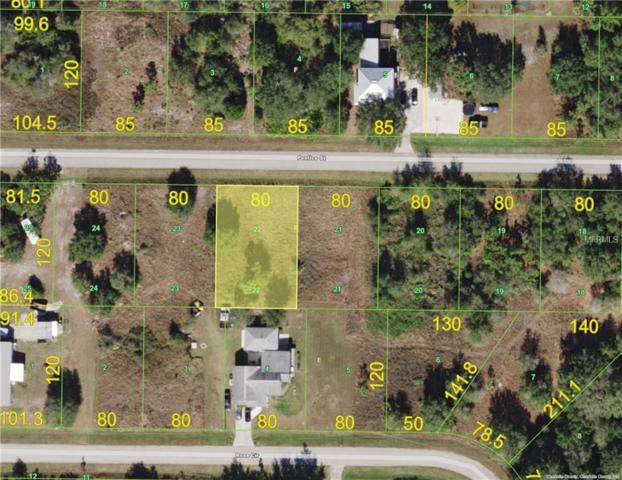 29339 Pontico Street, Punta Gorda, FL 33982 (MLS #C7251183) :: G World Properties