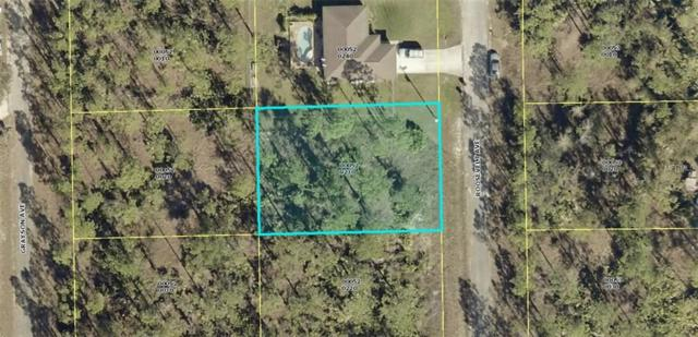 2121 Roosevelt Avenue, Alva, FL 33920 (MLS #C7251582) :: Cartwright Realty
