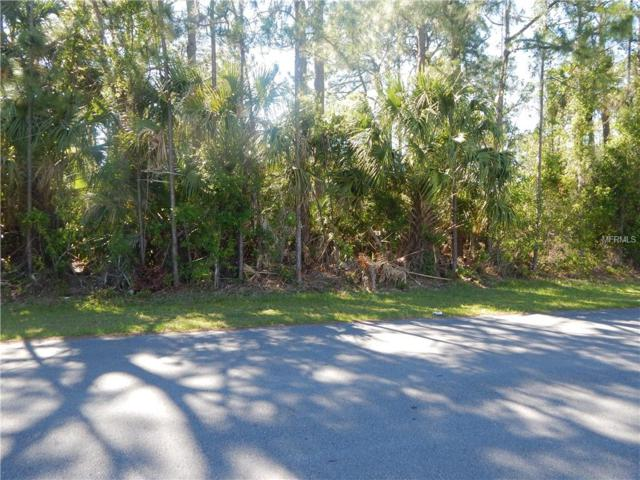 Kendsha Street, North Port, FL 34288 (MLS #C7400044) :: Team Pepka