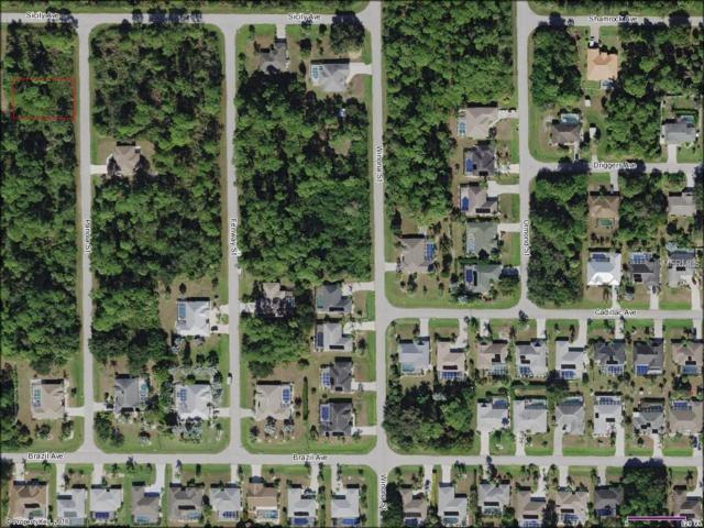 4171 Panola Street, Port Charlotte, FL 33948 (MLS #C7400099) :: RE/MAX Realtec Group
