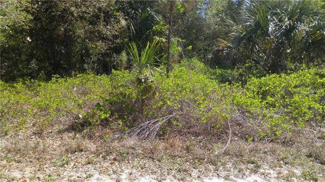Surprise Road, North Port, FL 34288 (MLS #C7400269) :: KELLER WILLIAMS CLASSIC VI