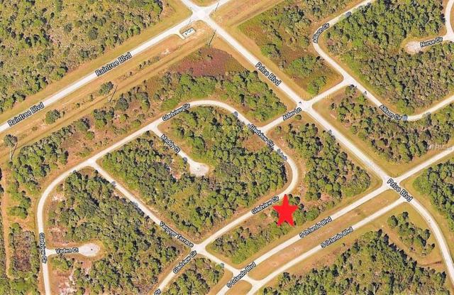 Gladview Circle, North Port, FL 34288 (MLS #C7400370) :: Dalton Wade Real Estate Group