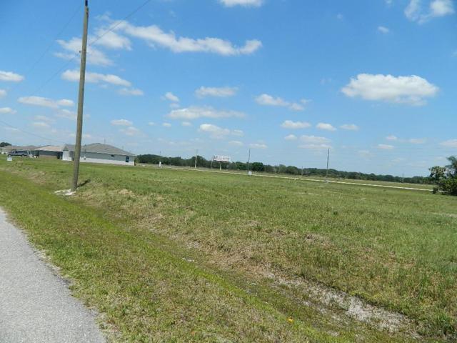 11350 SW Primrose Drive, Arcadia, FL 34269 (MLS #C7400450) :: The Duncan Duo Team