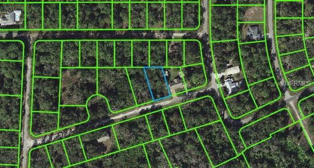 3139 Essex Avenue, Lake Placid, FL 33852 (MLS #C7400680) :: The Duncan Duo Team