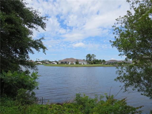 12990 SW David Drive, Lake Suzy, FL 34269 (MLS #C7400779) :: The Duncan Duo Team