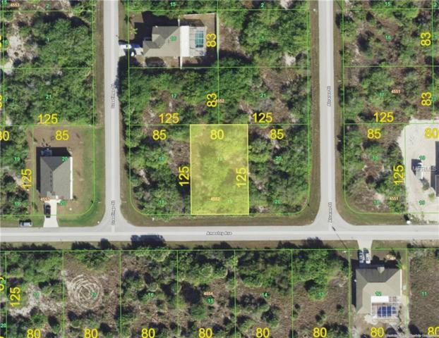 14312 Amestoy Avenue, Port Charlotte, FL 33981 (MLS #C7401120) :: The Duncan Duo Team