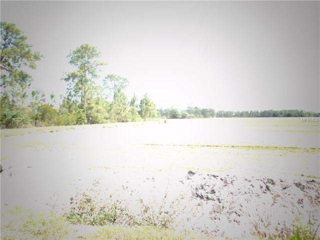 1231 East Creek Trail, Arcadia, FL 34266 (MLS #C7401174) :: The Duncan Duo Team