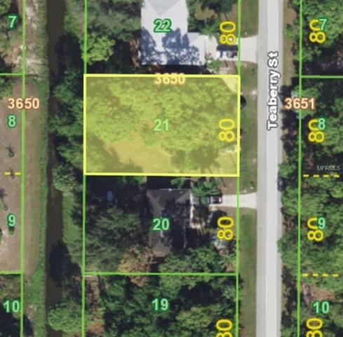 7337 Teaberry Street, Englewood, FL 34224 (MLS #C7401291) :: Team Pepka
