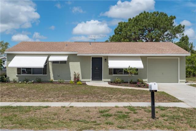 3217 Gatun Street, North Port, FL 34287 (MLS #C7401524) :: The Lockhart Team