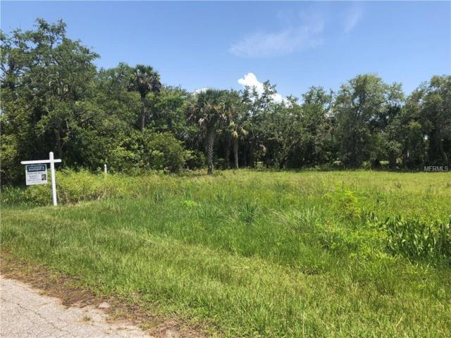 26017 Flower Road, Punta Gorda, FL 33955 (MLS #C7402163) :: Medway Realty