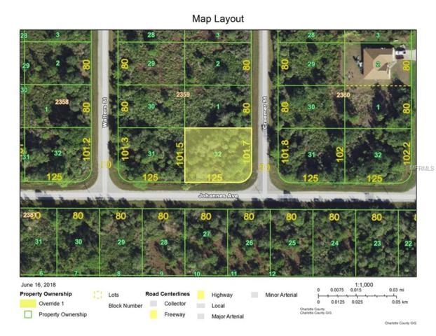 13140 Johannes Avenue, Port Charlotte, FL 33953 (MLS #C7402450) :: The Price Group