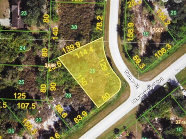 11188 Oceanspray Boulevard, Englewood, FL 34224 (MLS #C7403020) :: Premium Properties Real Estate Services
