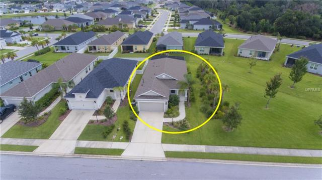 4313 Magnolia Blossom Drive, Parrish, FL 34219 (MLS #C7403360) :: Medway Realty