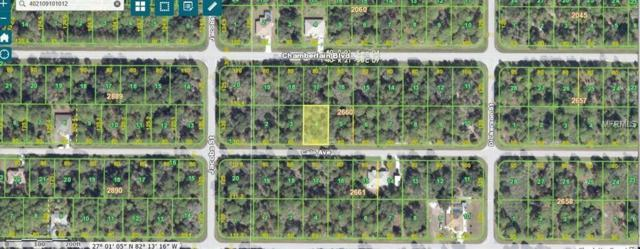 14022 Cain Avenue, Port Charlotte, FL 33953 (MLS #C7403374) :: Godwin Realty Group