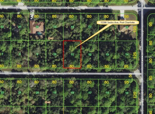 13390 Sedro Avenue, Port Charlotte, FL 33953 (MLS #C7403807) :: Griffin Group