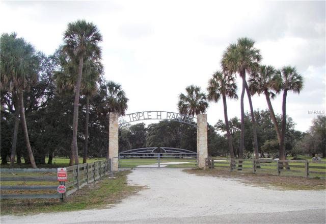 NW Lily Co Line Road, Arcadia, FL 34266 (MLS #C7404142) :: The Duncan Duo Team
