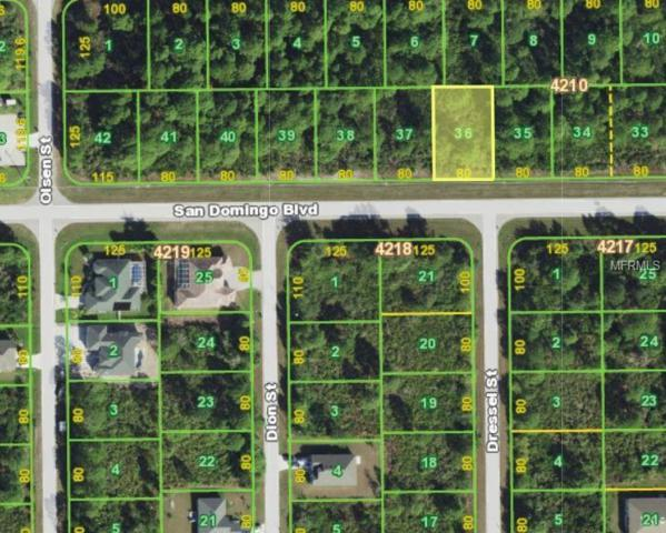 14138 San Domingo Boulevard, Port Charlotte, FL 33981 (MLS #C7404355) :: Griffin Group