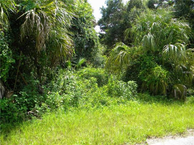 16435 Strauss Avenue, Port Charlotte, FL 33954 (MLS #C7404384) :: Godwin Realty Group