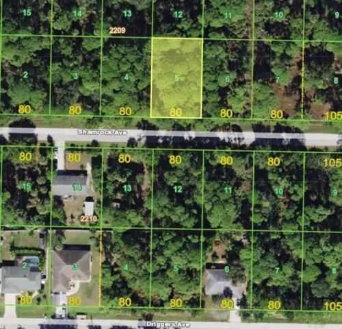 18210 Shamrock Avenue, Port Charlotte, FL 33948 (MLS #C7404399) :: RE/MAX Realtec Group