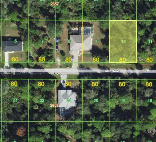 14156 Cain Avenue, Port Charlotte, FL 33953 (MLS #C7404402) :: Godwin Realty Group
