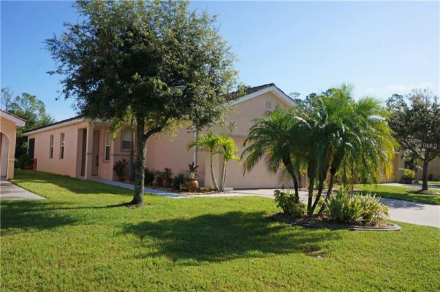 13160 SW Pembroke Cir N, Lake Suzy, FL 34269 (MLS #C7404467) :: McConnell and Associates