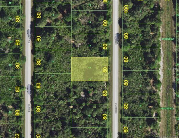 4379 Schneider Street, Port Charlotte, FL 33981 (MLS #C7404600) :: G World Properties