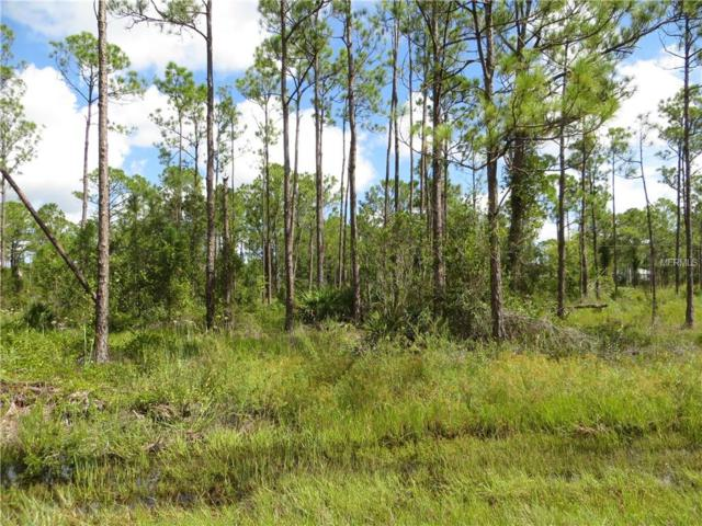 28066 Crestwood Drive, Punta Gorda, FL 33955 (MLS #C7404652) :: G World Properties