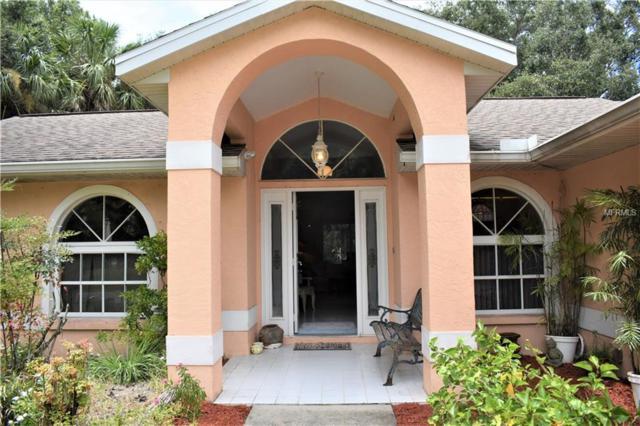 1745 Kirkwood Street, North Port, FL 34288 (MLS #C7404741) :: The Lockhart Team