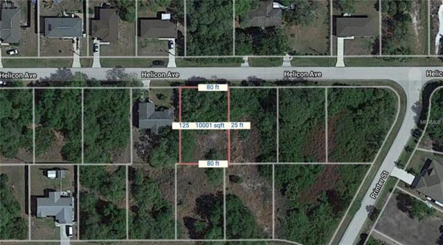 12045 Helicon Avenue, Port Charlotte, FL 33981 (MLS #C7404762) :: The BRC Group, LLC