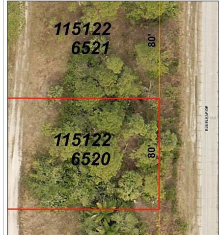 Blueleaf Drive, North Port, FL 34288 (MLS #C7404870) :: RE/MAX Realtec Group