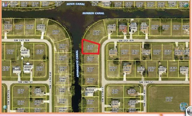128 SW 13 Court, Cape Coral, FL 33991 (MLS #C7404920) :: The Duncan Duo Team